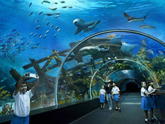 jual tiket sea aquarium singapore