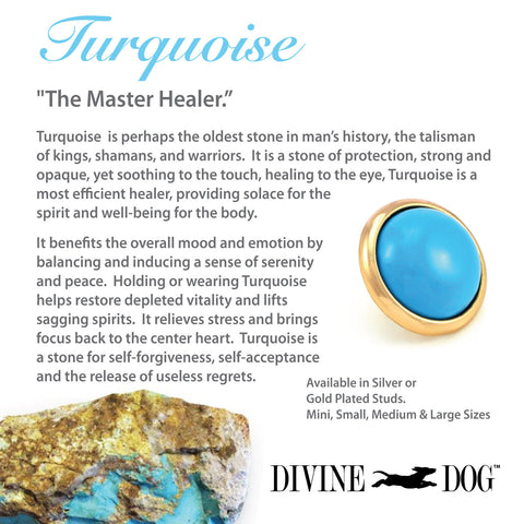 Divine Dog Gemstones for Dog Collars, Leashes and Companion Bracelets - Turquoise