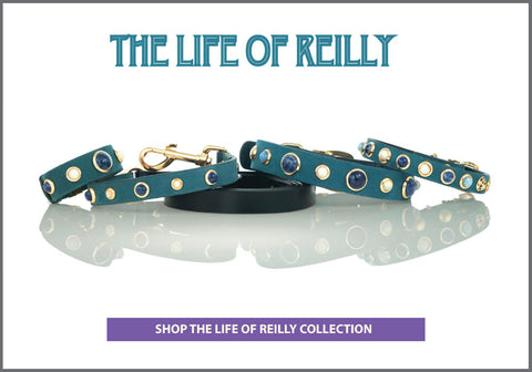 THE LIFE OF REILLY Collection of Dog Collars, Leashes and Owner Bracelets with Gemstones