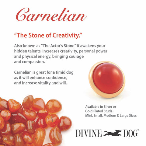 Divine Dog Gemstones for Dog Collars, Leashes and Companion Bracelets - Carnelian
