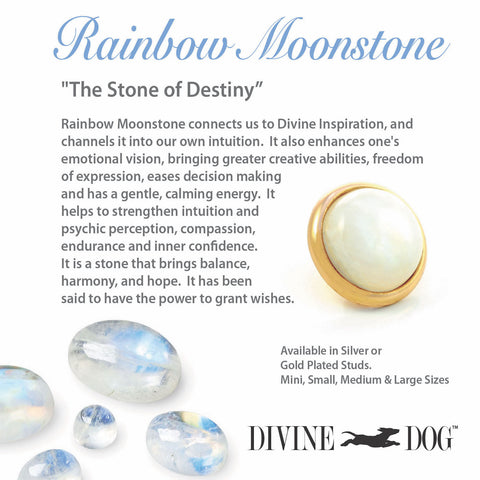 Divine Dog Gemstone Studs for Dog Collars, Leashes and Companion Bracelets - Rainbow Moonstone
