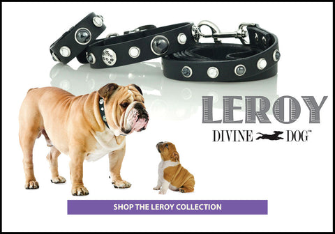 Divine Dog Leroy Collection of Leather Dog Collars, Leashes and Owner Bracelets with Gemstones - SHOP