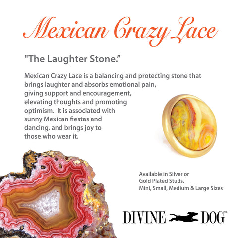Divine Dog Gemstones for Dog Collars, Leashes and Companion Bracelets - Mexican Crazy Lace