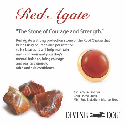 Divine Dog Gemstone Studs for Dog Collars, Leashes and Companion Bracelets - Red Agate