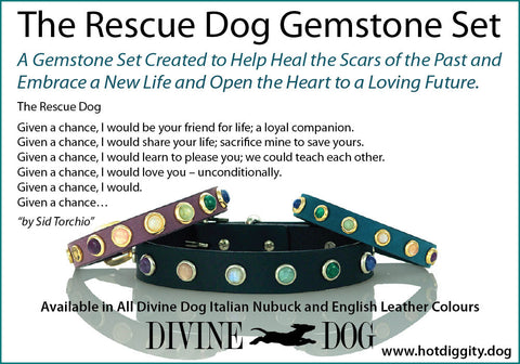 THE RESCUE DOG GEMSTONE COLLECTION - Dog Collars, Leashes and Owner Bracelets