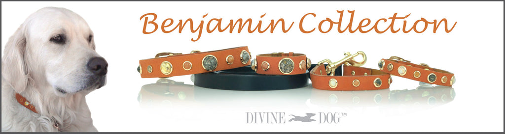 Divine Dog Benjamin Collection of Leather Dog Collars, Leashes and Owner Bracelets with Gemstones