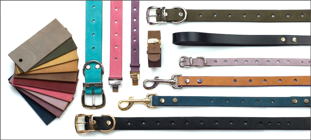 Divine Dog Stud Ready Leather Collars Leashes and Bracelets