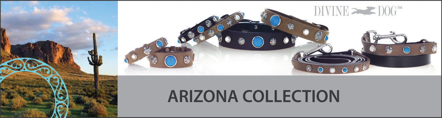 Divine Dog Arizona Collection of Dog Collars with Turquoise Gemstones, Dog Leashes and Companion Bracelets