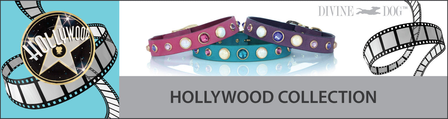 Divine Dog Gemstone and Crystal Pink, Purple and Turquoise Leather Dog Collars, Leashes and Companion Bracelets - Hollywood Collection