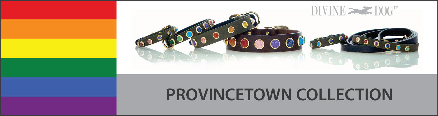 Divine Dog Collars and Leashes with Gemstones - Provincetown Collection