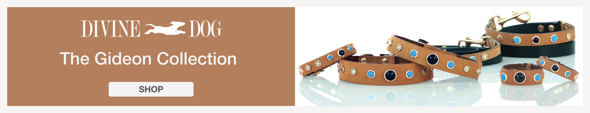 The Gideon Collection of Leather Dog Collars with Gemstones