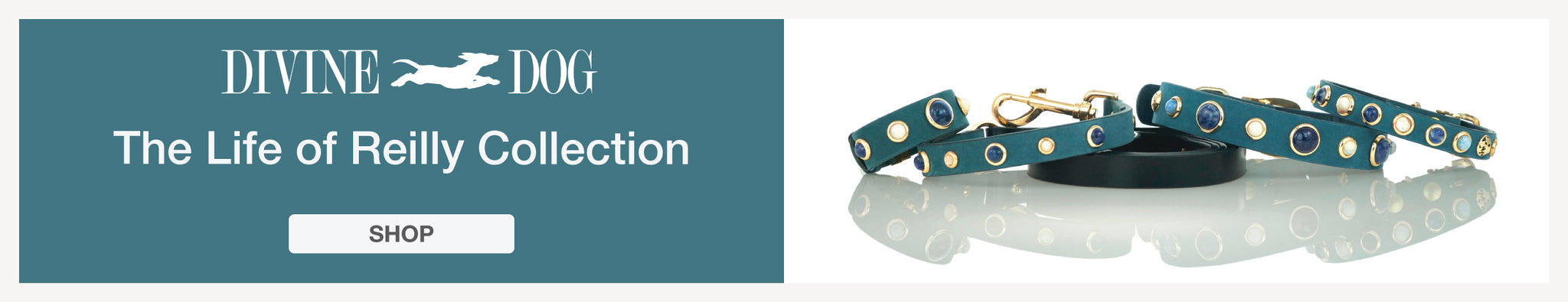 The Life of Reilly Collection of Leather Dog Collars with Gemstones