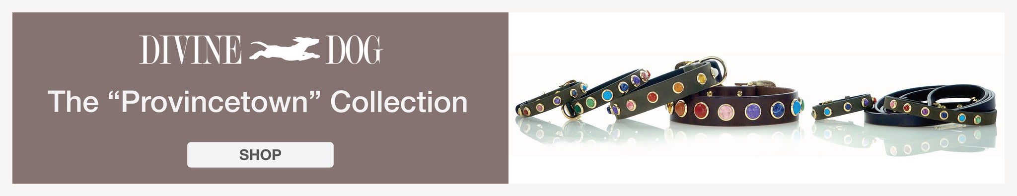 Divine Dog Provincetown Collection of Leather Dog Collars with Gemstones