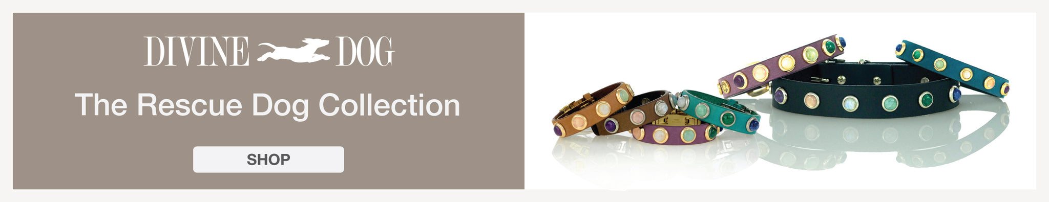 The Rescue Dog Collection of Leather Dog Collars with Gemstones