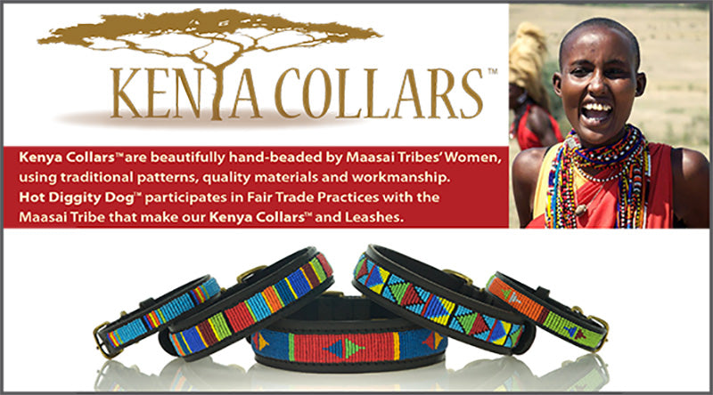 Kenya Dog Collars and Leashes Image 800 X 444px