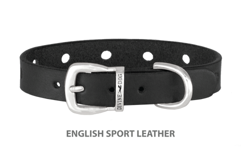 Divine Dog Collar, English Sport Leather Black-Silver 1/2 inch Wide (14mm), Fits Neck 8.5 to 10 Inches