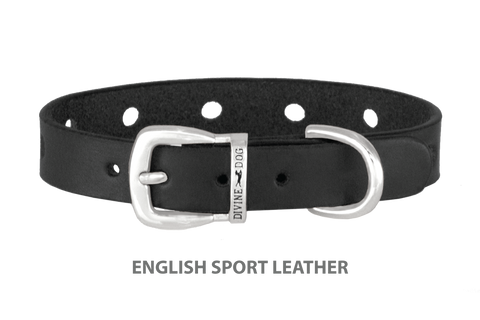 Divine Dog Collar, English Sport Leather Black-Silver 1/2 inch Wide (14mm), Fits Neck 7 to 8.5 Inches