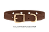 Divine Dog Collar, Nubuck Mocha-Gold 1/2 inch Wide (14mm), Fits Neck 7 to 8.5 Inches