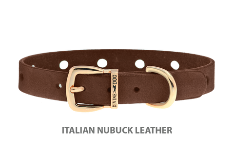 Divine Dog Collar, Nubuck Mocha-Gold 1/2 inch Wide (14mm), Fits Neck 8.5 to 10 Inches