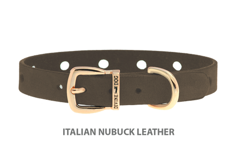 Divine Dog Collar, Nubuck Moss-Gold 1/2 inch Wide (14mm), Fits Neck 8.5 to 10 Inches