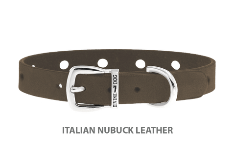 Divine Dog Collar, Nubuck Moss-Silver 1/2 inch Wide (14mm), Fits Neck 8.5 to 10 Inches