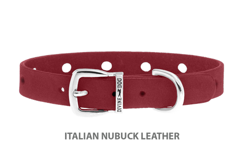 Divine Dog Collar, Nubuck Sunset-Silver 1/2 inch Wide (14mm), Fits Neck 8.5 to 10 Inches