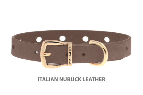 Divine Dog Collar, Nubuck Ashford Grey-Gold 1/2 inch Wide (14mm), Fits Neck 7 to 8.5 Inches