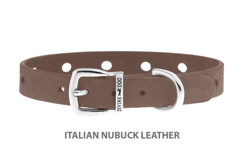 Divine Dog Collar, Nubuck Ashford Grey-Silver 1/2 inch Wide (14mm), Fits Neck 7 to 8.5 Inches