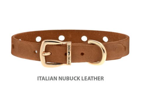 Divine Dog Collar, Nubuck Latte-Gold 1/2 inch Wide (14mm), Fits Neck 8.5 to 10 Inches
