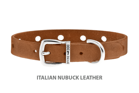 Divine Dog Collar, Nubuck Latte-Silver 1/2 inch Wide (14mm), Fits Neck 7 to 8.5 Inches