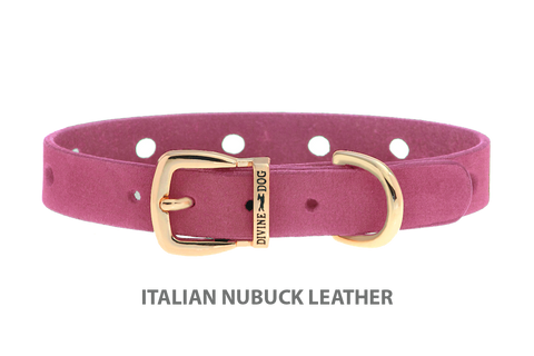 Divine Dog Collar, Nubuck Perfect Pink-Gold 1/2 inch Wide (14mm), Fits Neck 8.5 to 10 Inches