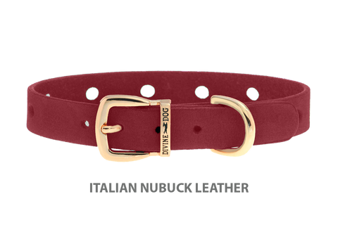 Divine Dog Collar, Nubuck Sunset-Gold 1/2 inch Wide (14mm), Fits Neck 7 to 8.5 Inches