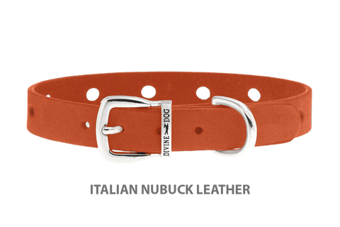 Divine Dog Collar, Nubuck Tiger Lily-Silver 1/2 inch Wide (14mm), Fits Neck 7 to 8.5 Inches