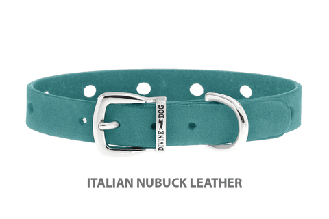 Divine Dog Collar, Nubuck Turquoise-Silver 1/2 inch Wide (14mm), Fits Neck 7 to 8.5 Inches