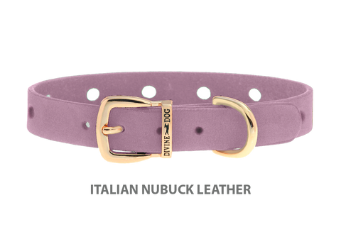 Divine Dog Collar, Nubuck Violet-Gold 1/2 inch Wide (14mm), Fits Neck 7 to 8.5 Inches
