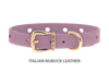 Collar for Divine Dog Studs, Violet Nubuck leather with gold plated hardware