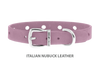 Divine Dog Collar, Nubuck Violet-Silver 1/2 inch Wide (14mm), Fits Neck 7 to 8.5 Inches