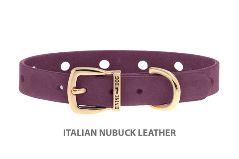 Divine Dog Collar, Nubuck Yummy Plummy-Gold 1/2 inch Wide (14mm), Fits Neck 8.5 to 10 Inches