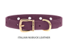 Collar for Divine Dog Studs, Purple Nubuck leather with gold plated hardware