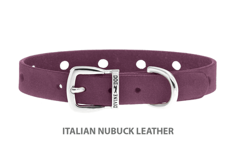 Divine Dog Collar, Nubuck Yummy Plummy-Silver 1/2 inch Wide (14mm), Fits Neck 7 to 8.5 Inches