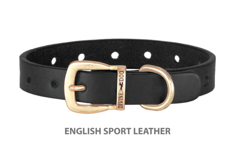 Divine Dog Collar, English Sport Leather Black-Gold 5/8 inch Wide (17mm), Fits Neck 12 to 14 Inches