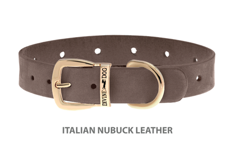 Divine Dog Collar, Nubuck Ashford Grey-Gold 5/8 inch Wide (17mm), Fits Neck 12 to 14 Inches