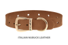 Dog Collar for Divine Dog Studs, Latte Nubuck leather with gold plated hardware