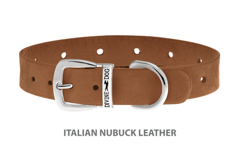 Divine Dog Collar, Nubuck Latte-Silver 5/8 inch Wide (17mm), Fits Neck 12 to 14 Inches