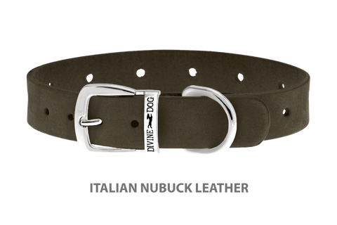 Divine Dog Collar, Nubuck Moss-Silver 5/8 inch Wide (17mm), Fits Neck 12 to 14 Inches