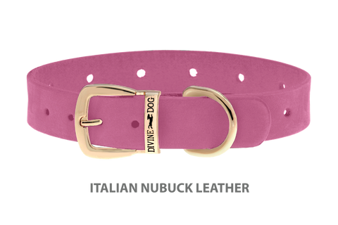 Divine Dog Collar, Nubuck Perfect Pink-Gold 5/8 inch Wide (17mm), Fits Neck 12 to 14 Inches