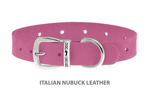 Divine Dog Collar, Nubuck Perfect Pink-Silver 5/8 inch Wide (17mm), Fits Neck 10 to 12 Inches