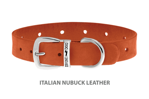 Divine Dog Collar, Nubuck Tiger Lily-Silver 5/8 inch Wide (17mm), Fits Neck 12 to 14 Inches