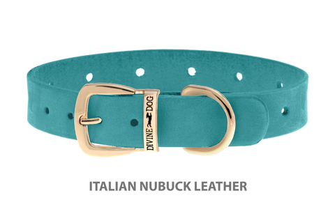 Divine Dog Collar, Nubuck Turquoise-Gold 5/8 inch Wide (17mm), Fits Neck 12 to 14 Inches