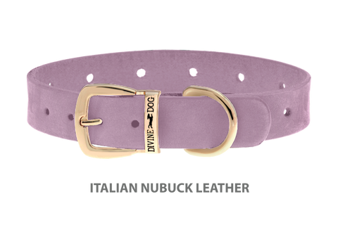 Divine Dog Collar, Nubuck Violet-Gold 5/8 inch Wide (17mm), Fits Neck 12 to 14 Inches